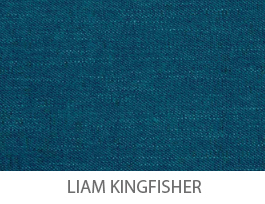 M-HC-Liam Kingfisher