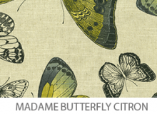 Madame Butterfly Citron